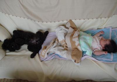 逆向きで寝る二人