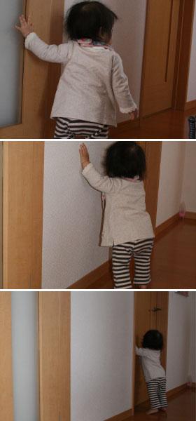 壁をつたって歩きます